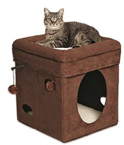 MidWest Homes for Pets Curious Cat Cube