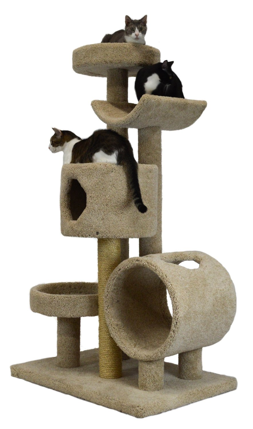Molly and Friends Wooden Cat Furniture