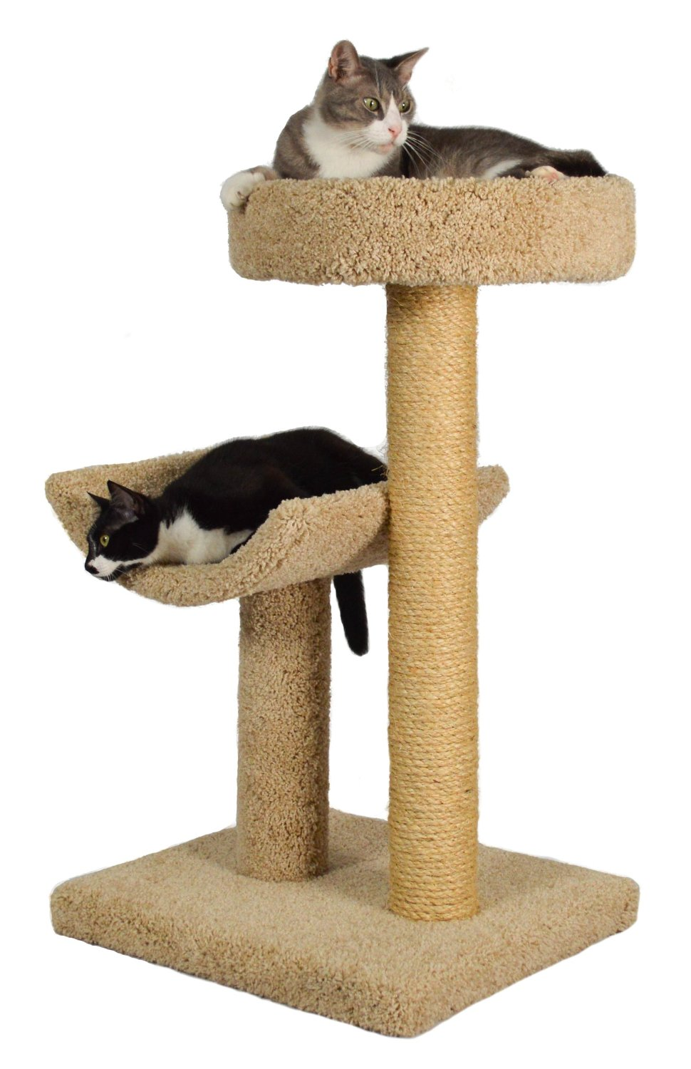 Finicky Cat Scratching Posts