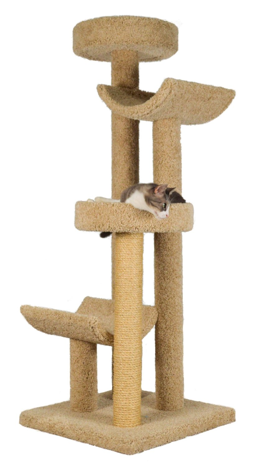 Cat Trees For Large Cats
