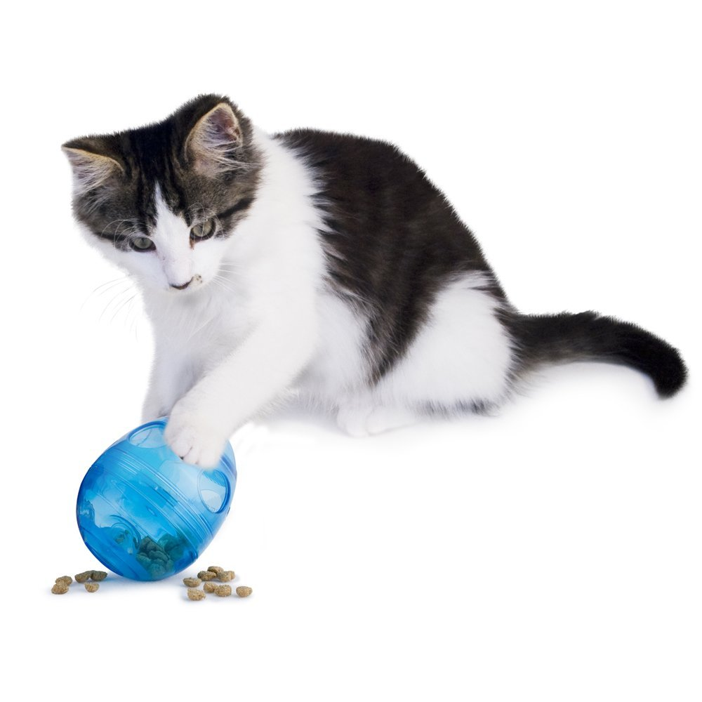 PetSafe FUNKitty Egg Cersizer Interactive Toy and Food Dispenser