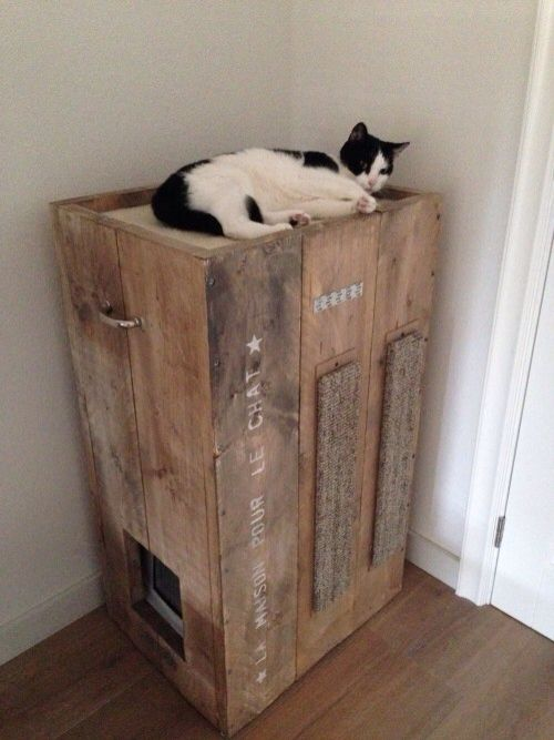 DIY Cat condo with built in litter box